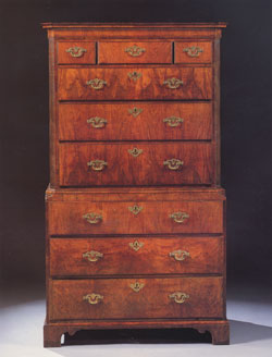 Burr Walnut Chest on Chest